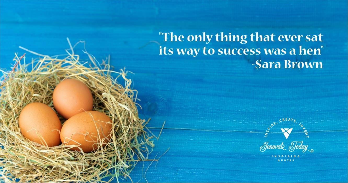 The only thing that ever sat its way to success Sarah Brown